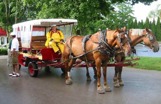 A picture named Mackinac Island Horse Taxi.jpg