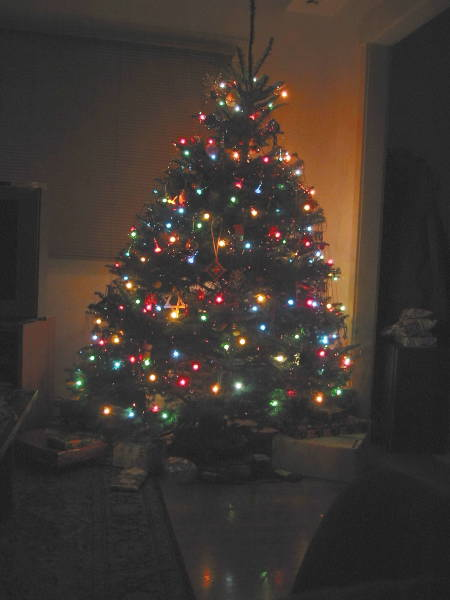 A picture named Xmas Tree 2004.jpg